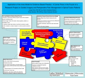 Application of the Iowa Model for Evidence Based Practice
